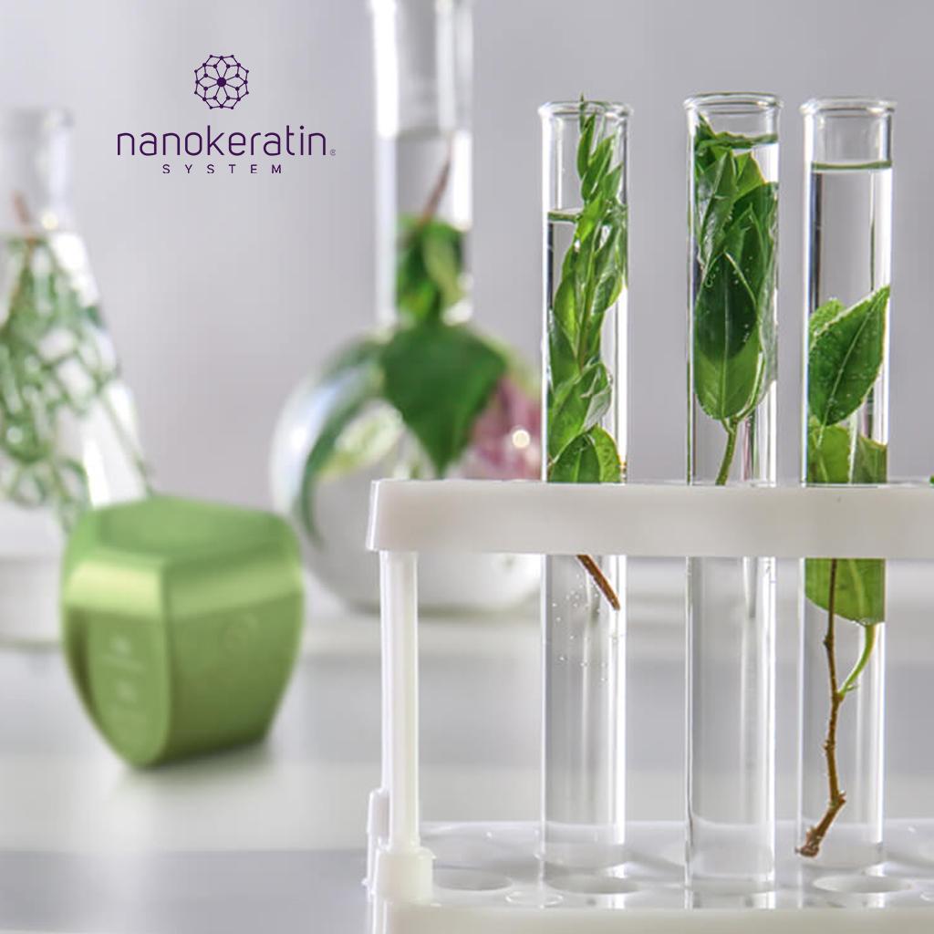 Biomimesi molecolare